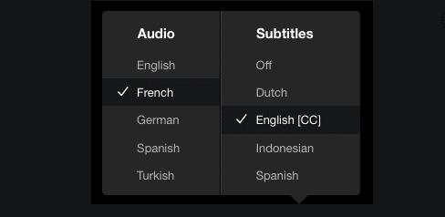 YouTube Multilingual Subtitles